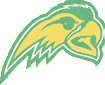 Alexie Falcons