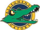 Allegheny-Clarion Valley Falcons