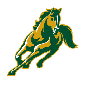Abraham Baldwin Agricultural College Golden Stallions