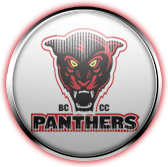 Baltimore City Community College Panthers