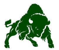Bethany College Bison